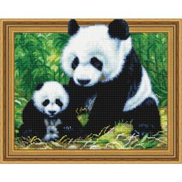 5PD4050050 Diamond painting kit - Panda with a cub