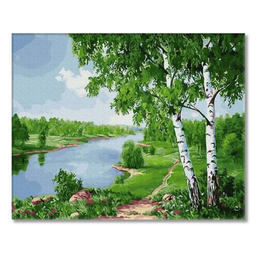 PC4050655 Painting by numbers - Birches by the river