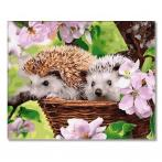 PC4050626 Painting by numbers - Hedgehogs in a basket