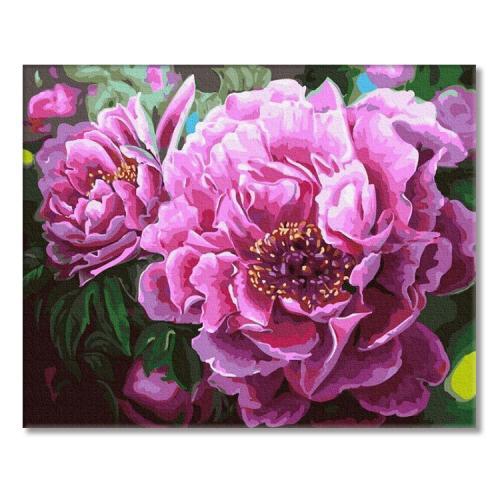 PC4050814 Painting by numbers - Blooming peonies