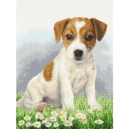 AN 10339 Tapestry Aida - Terrier puppy