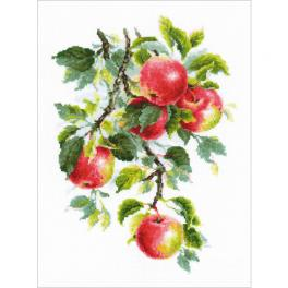 RIO 1938 Cross stitch kit with mouline - Juicy apples