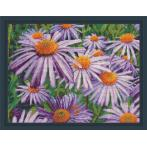 M AZ-1702 Diamond painting kit - Purple chamomiles